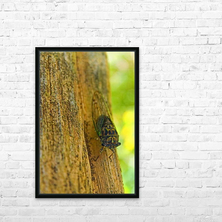 Cicada HD Sublimation Metal print with Decorating Float Frame (BOX)