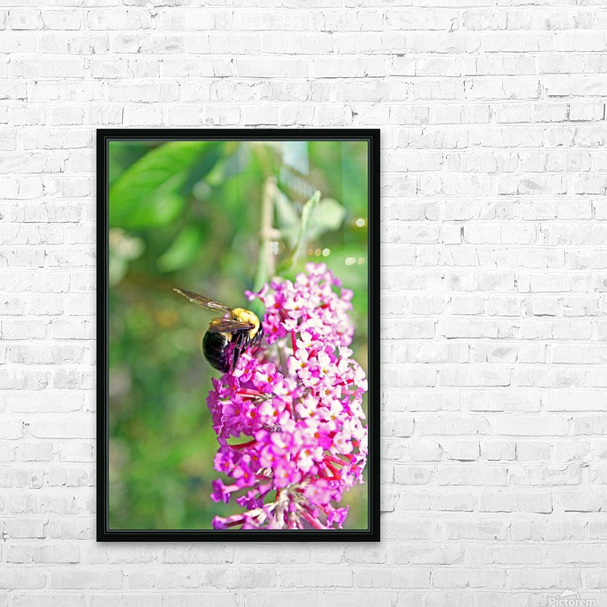 Bumblebee on a Flower HD Sublimation Metal print with Decorating Float Frame (BOX)