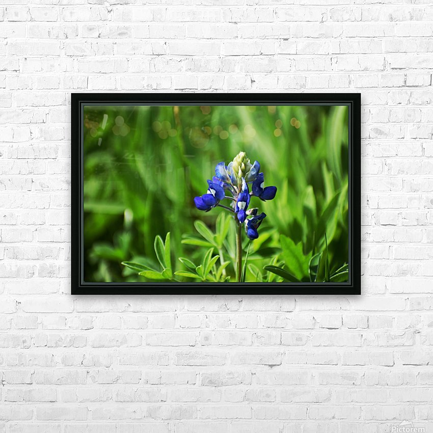 Texas Blue Bonnets HD Sublimation Metal print with Decorating Float Frame (BOX)