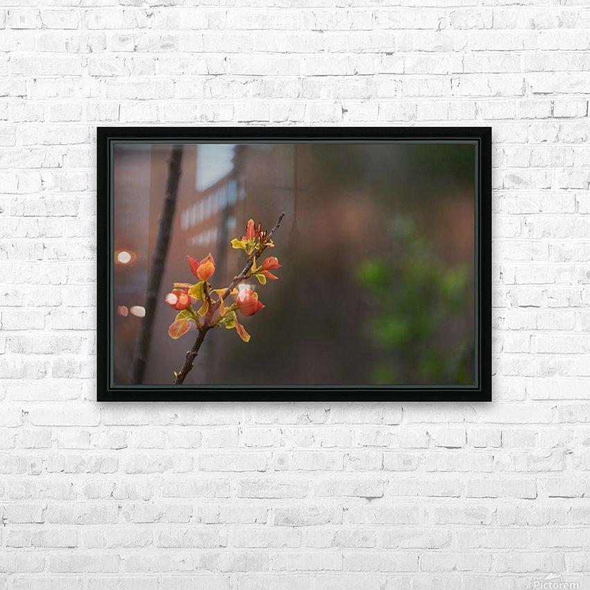 orange blossoms HD Sublimation Metal print with Decorating Float Frame (BOX)