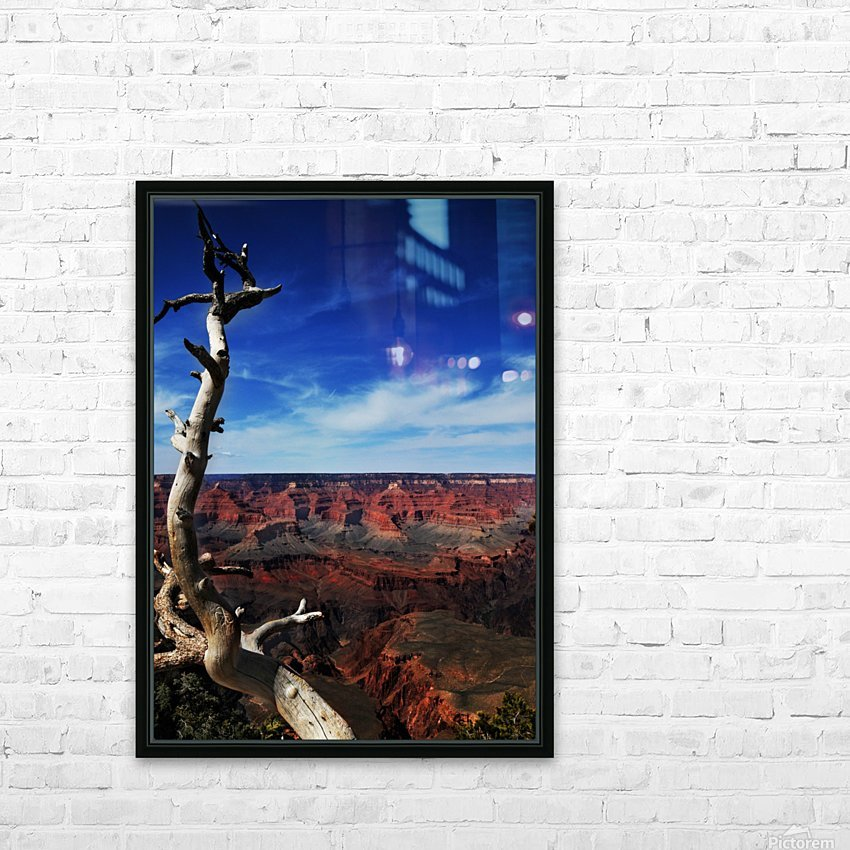 Grand Canyon framed by tree HD Sublimation Metal print with Decorating Float Frame (BOX)