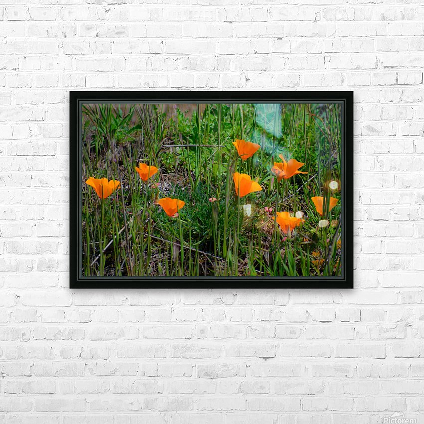 20190331 DSC_0762 HD Sublimation Metal print with Decorating Float Frame (BOX)