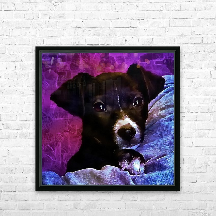Soft Puppy Snuggles HD Sublimation Metal print with Decorating Float Frame (BOX)