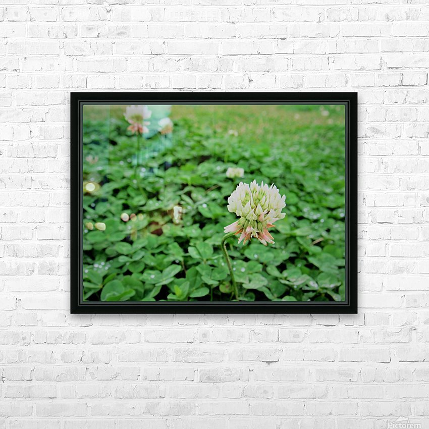 IMG_0007 HD Sublimation Metal print with Decorating Float Frame (BOX)