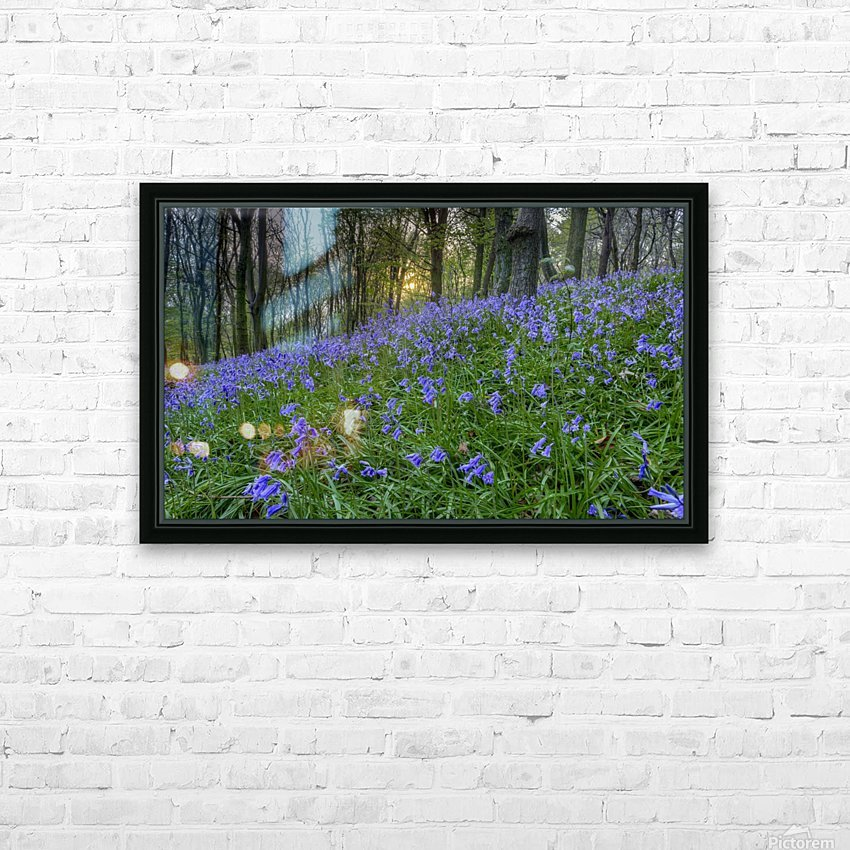 Sunset at Bluebell Wood in Margam HD Sublimation Metal print with Decorating Float Frame (BOX)