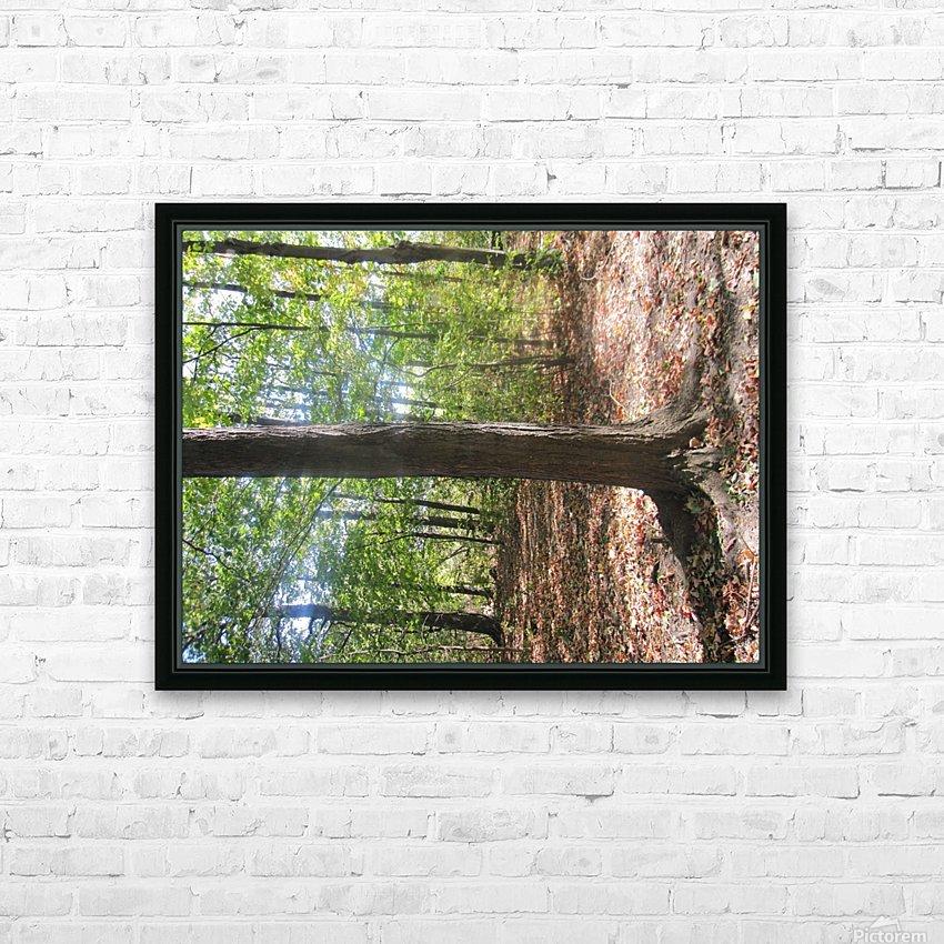 Landscape (60) HD Sublimation Metal print with Decorating Float Frame (BOX)