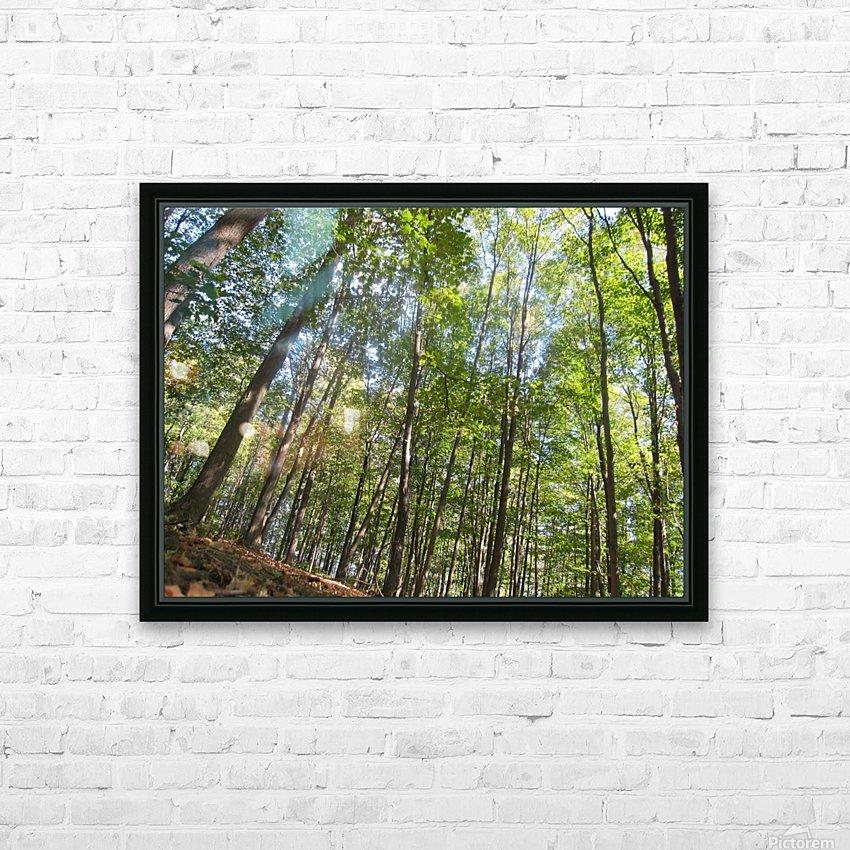 Landscape (249) HD Sublimation Metal print with Decorating Float Frame (BOX)