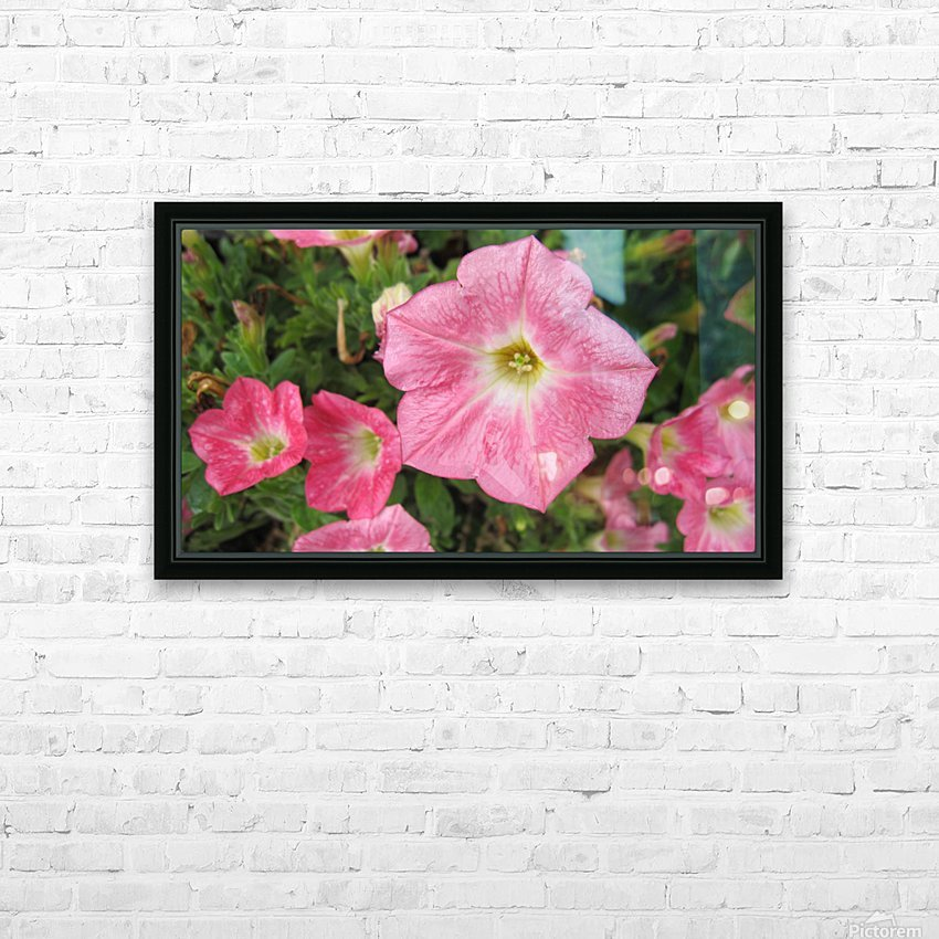 Flowers (86) HD Sublimation Metal print with Decorating Float Frame (BOX)