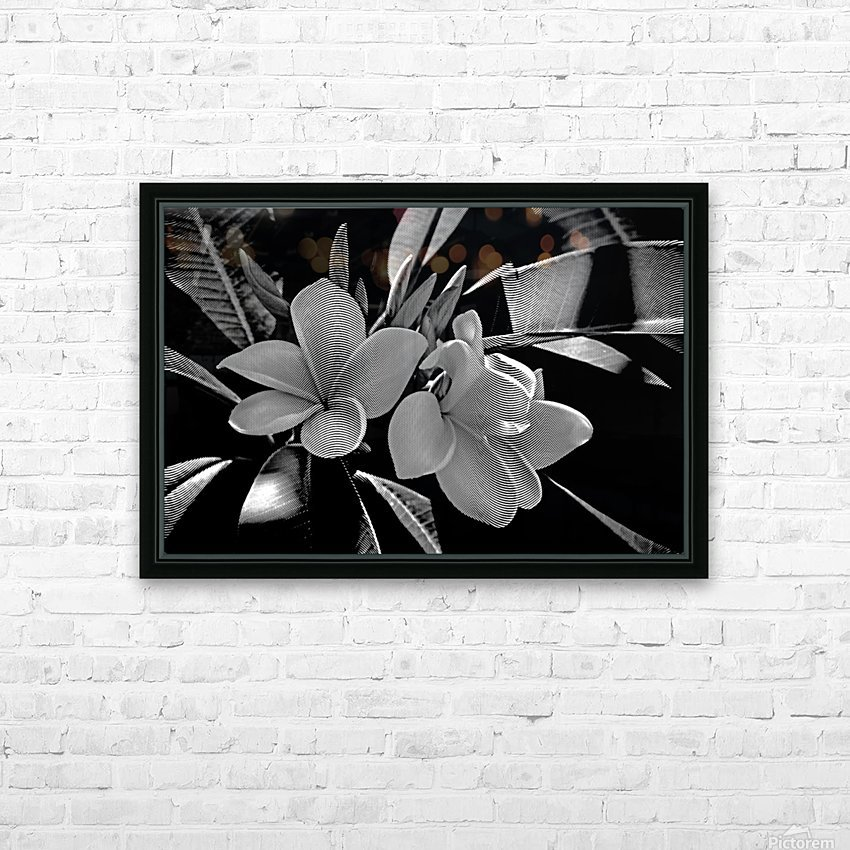 Plumeria In Black And White HD Sublimation Metal print with Decorating Float Frame (BOX)