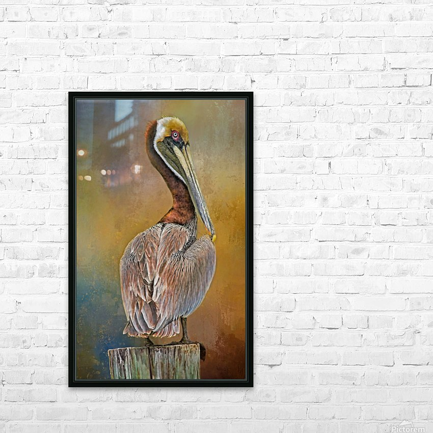 Brown Pelican In Breeding Plumage HD Sublimation Metal print with Decorating Float Frame (BOX)