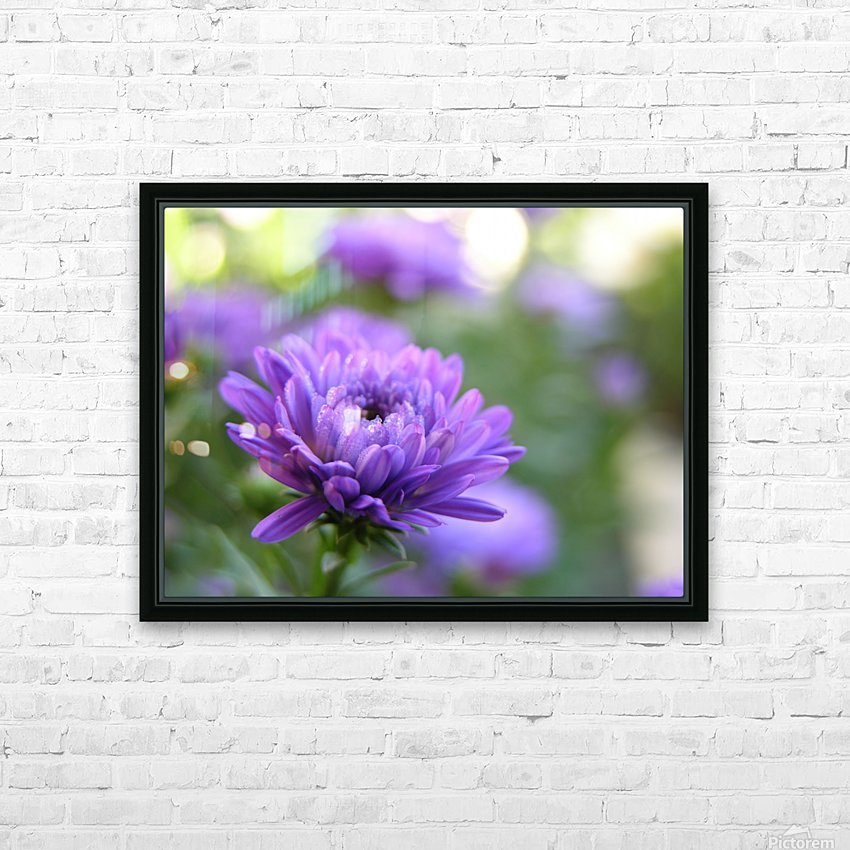 Blue Flower Photograph HD Sublimation Metal print with Decorating Float Frame (BOX)