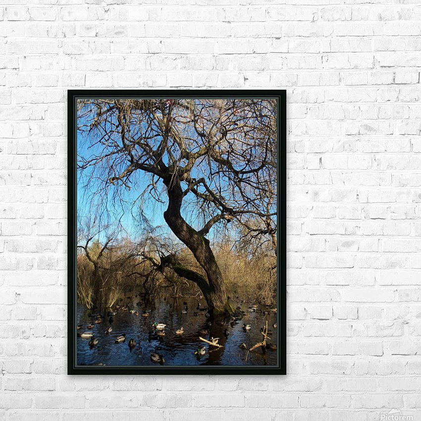Bow Park duck pond HD Sublimation Metal print with Decorating Float Frame (BOX)