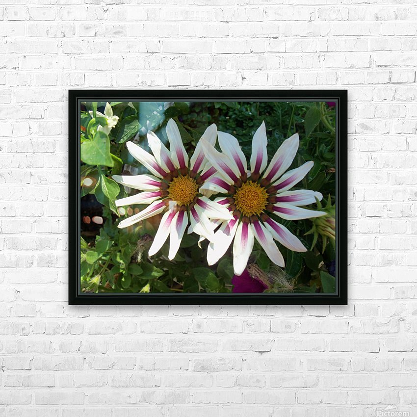 Saskatchewan Flowers HD Sublimation Metal print with Decorating Float Frame (BOX)