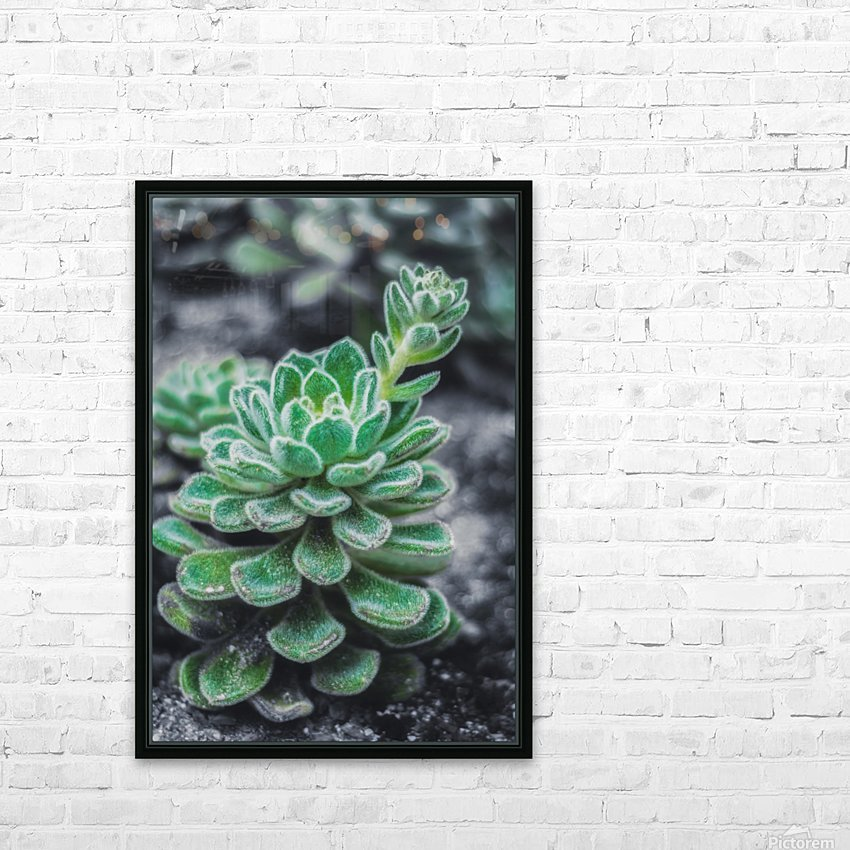 Sweetyplant HD Sublimation Metal print with Decorating Float Frame (BOX)