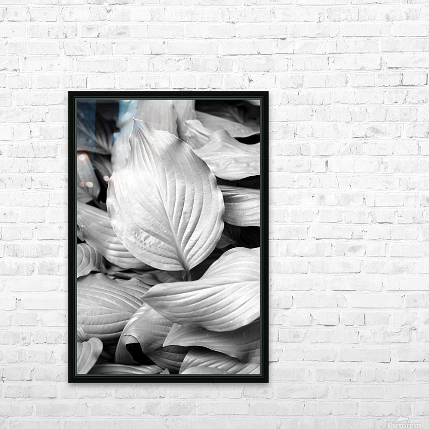 Softly Curving Foliage BW 062618 HD Sublimation Metal print with Decorating Float Frame (BOX)