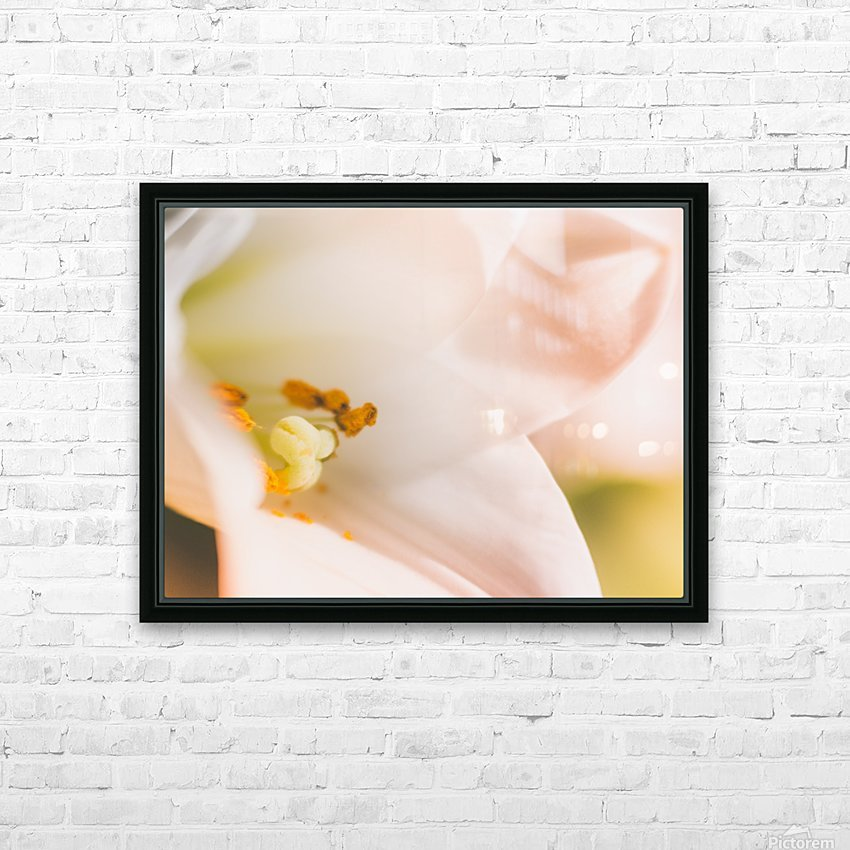 Easter Lily - Lilium Longiflorum - Flower Lily - Yellow White Close-Up Macro HD Sublimation Metal print with Decorating Float Frame (BOX)