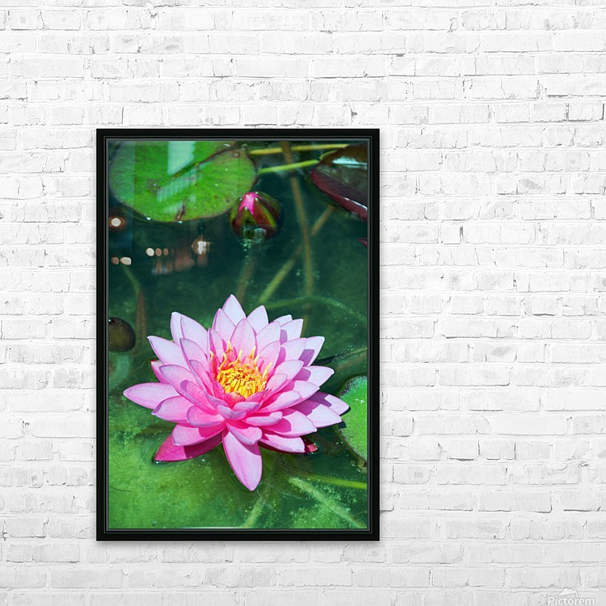In the pond HD Sublimation Metal print with Decorating Float Frame (BOX)