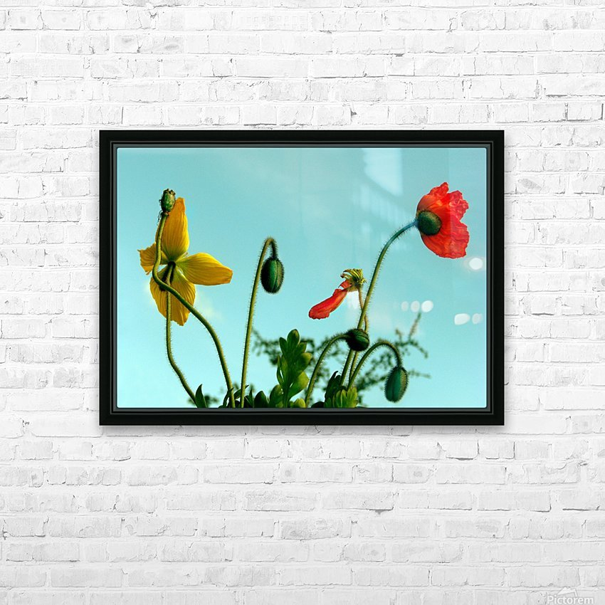 Spring Sky Flowers HD Sublimation Metal print with Decorating Float Frame (BOX)