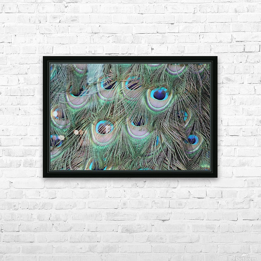 peacock feather pattern plumage HD Sublimation Metal print with Decorating Float Frame (BOX)