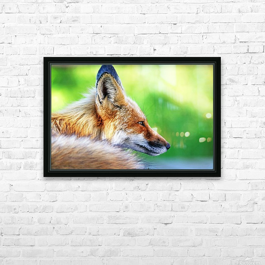 Red Fox Profile I HD Sublimation Metal print with Decorating Float Frame (BOX)