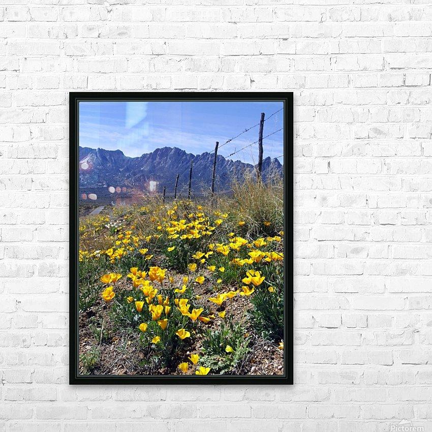 April at Aquirre Springs HD Sublimation Metal print with Decorating Float Frame (BOX)