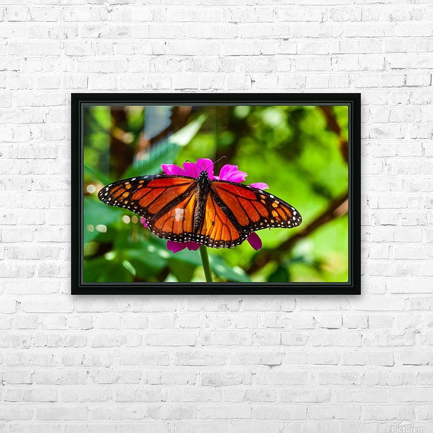Color Clash HD Sublimation Metal print with Decorating Float Frame (BOX)