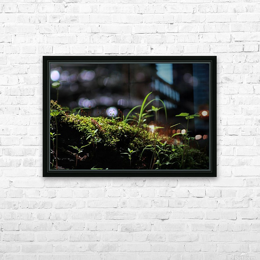 Beautiful Moss HD Sublimation Metal print with Decorating Float Frame (BOX)
