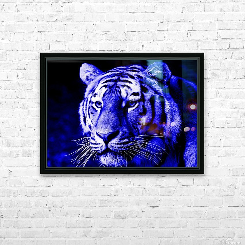 Tiger pop blue HD Sublimation Metal print with Decorating Float Frame (BOX)