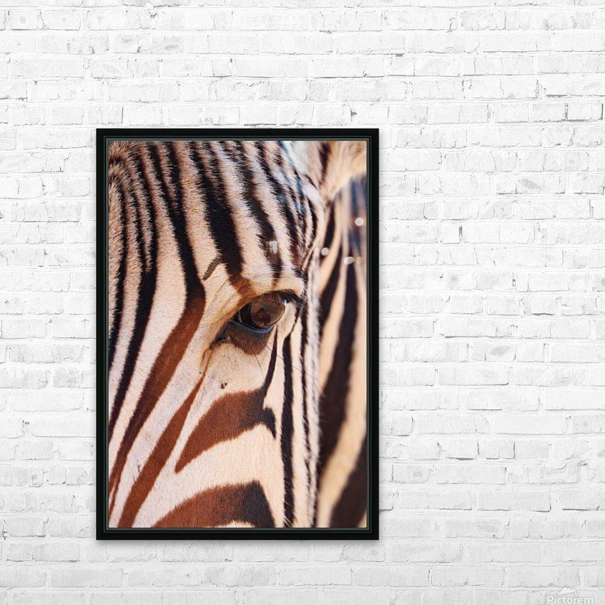 Zebra Eye 1873 HD Sublimation Metal print with Decorating Float Frame (BOX)