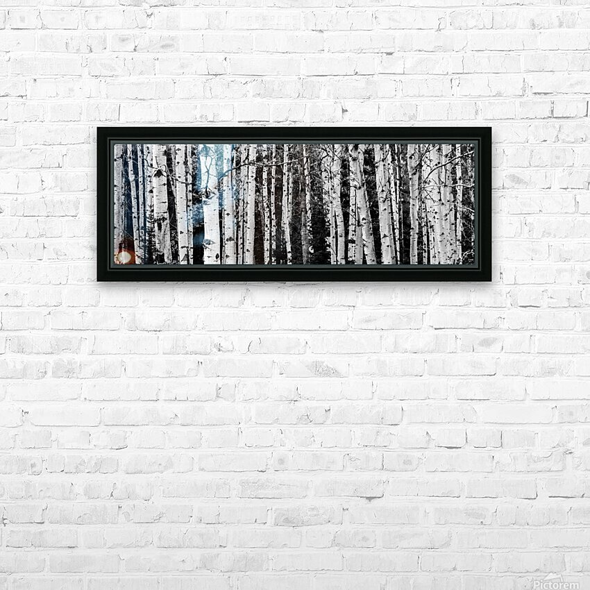 Birch Tree Forest HD Sublimation Metal print with Decorating Float Frame (BOX)