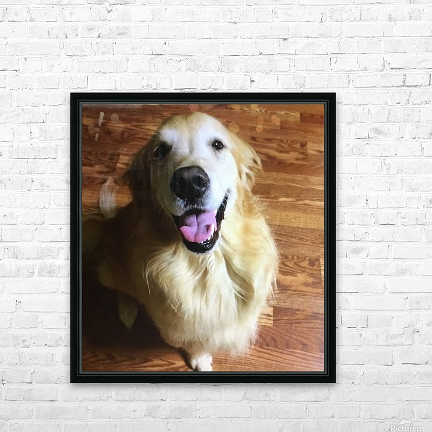 Happy Golden HD Sublimation Metal print with Decorating Float Frame (BOX)
