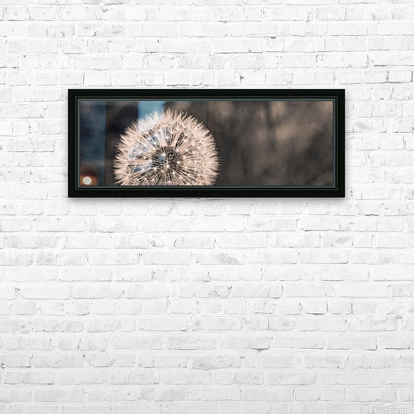 Late Season Dandelion 2 HD Sublimation Metal print with Decorating Float Frame (BOX)
