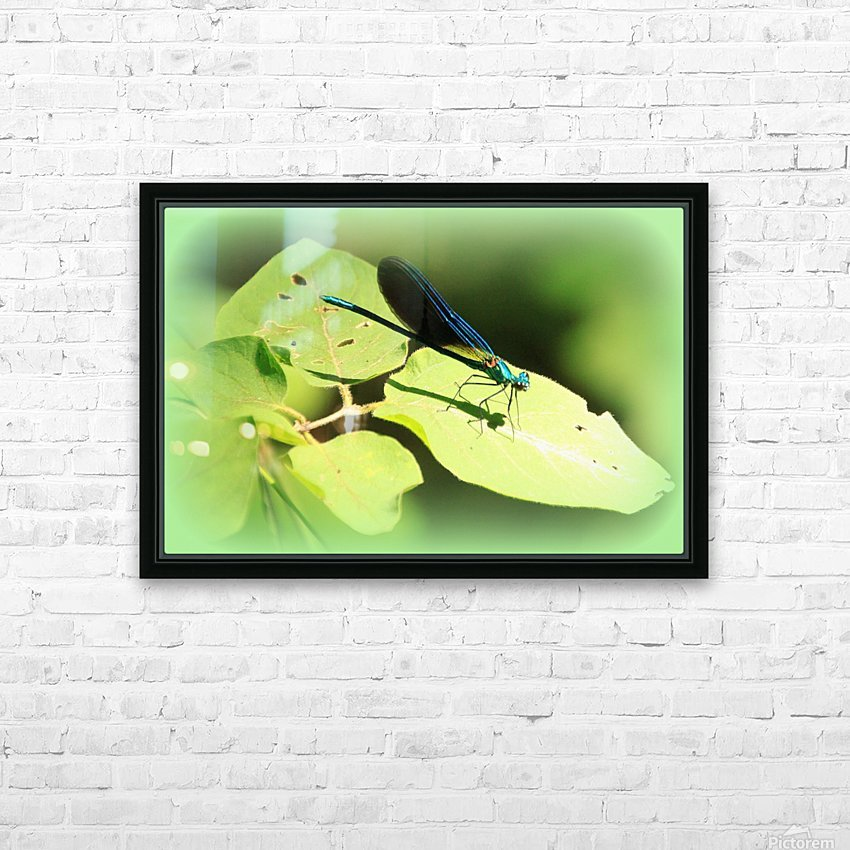 libellule HD Sublimation Metal print with Decorating Float Frame (BOX)