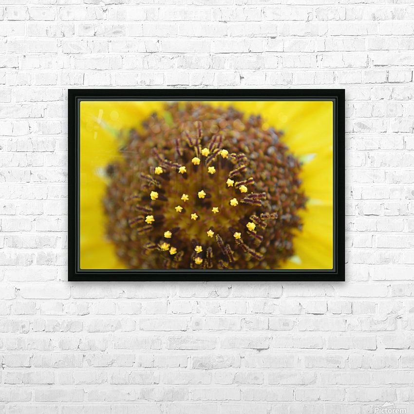 Sunflower Stars HD Sublimation Metal print with Decorating Float Frame (BOX)