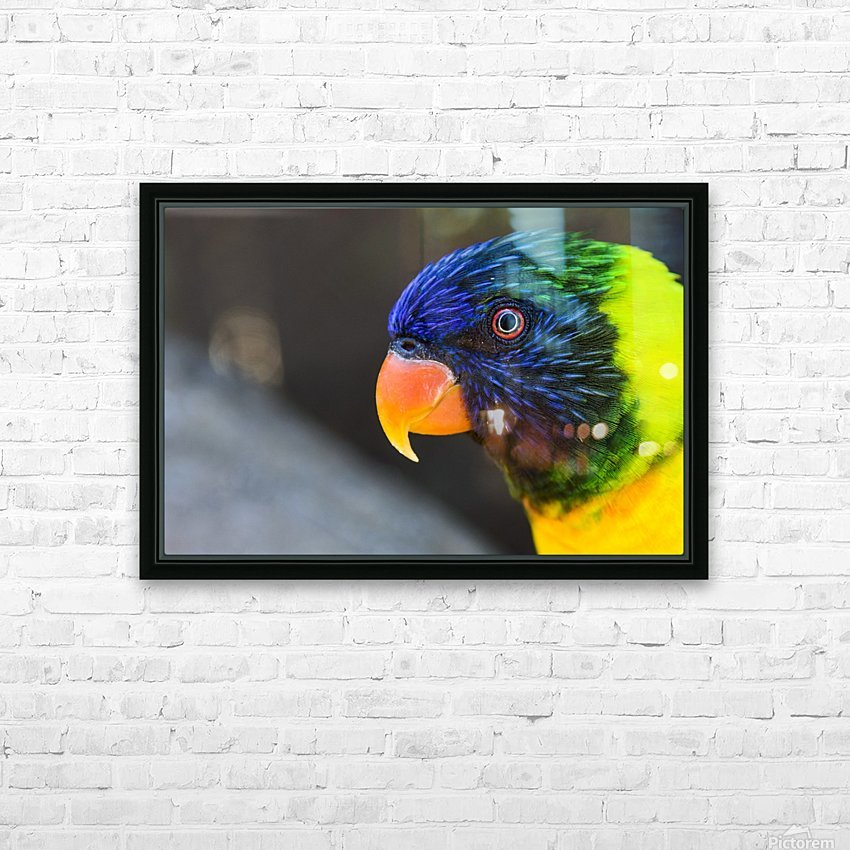 _LAB5536s HD Sublimation Metal print with Decorating Float Frame (BOX)