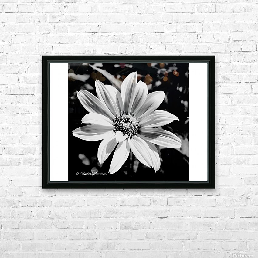 Daisy in bw HD Sublimation Metal print with Decorating Float Frame (BOX)