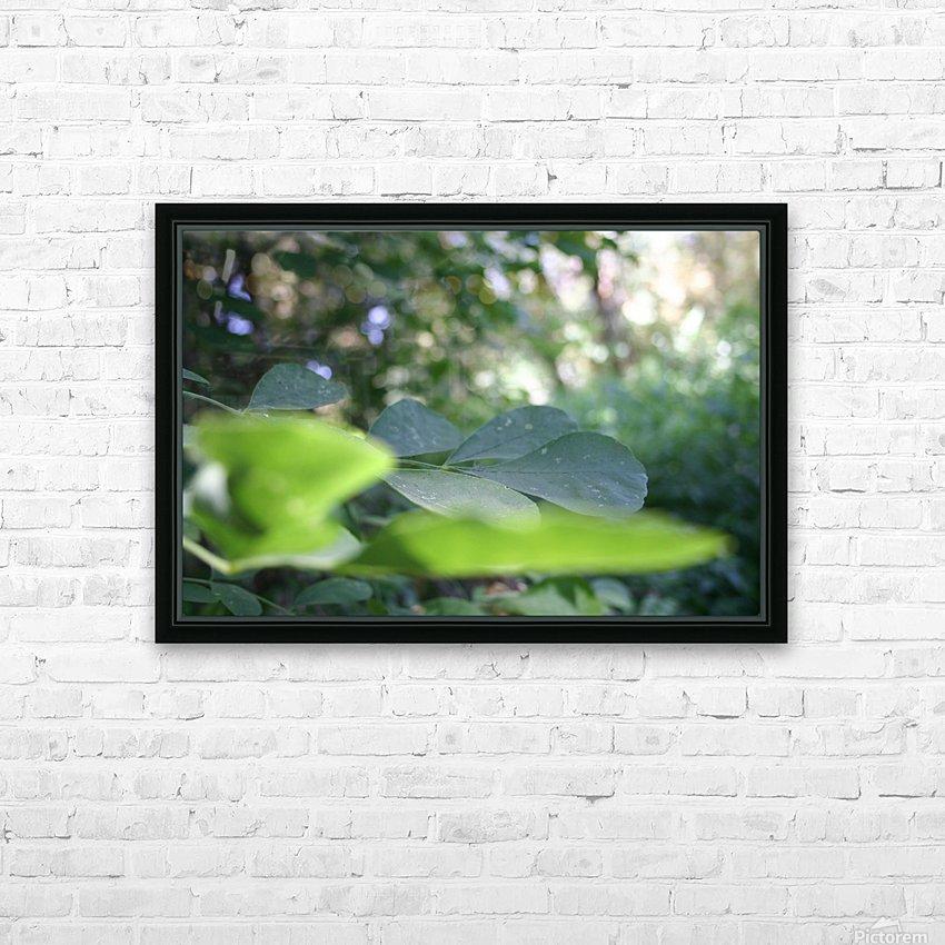 blur leaf HD Sublimation Metal print with Decorating Float Frame (BOX)