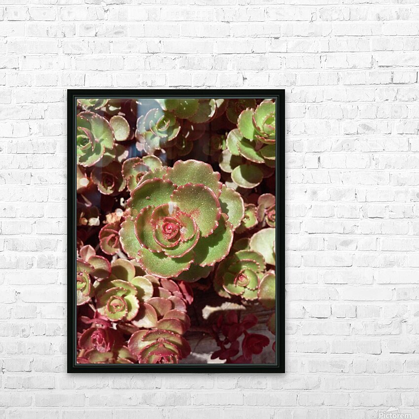 20160609_121459 HD Sublimation Metal print with Decorating Float Frame (BOX)