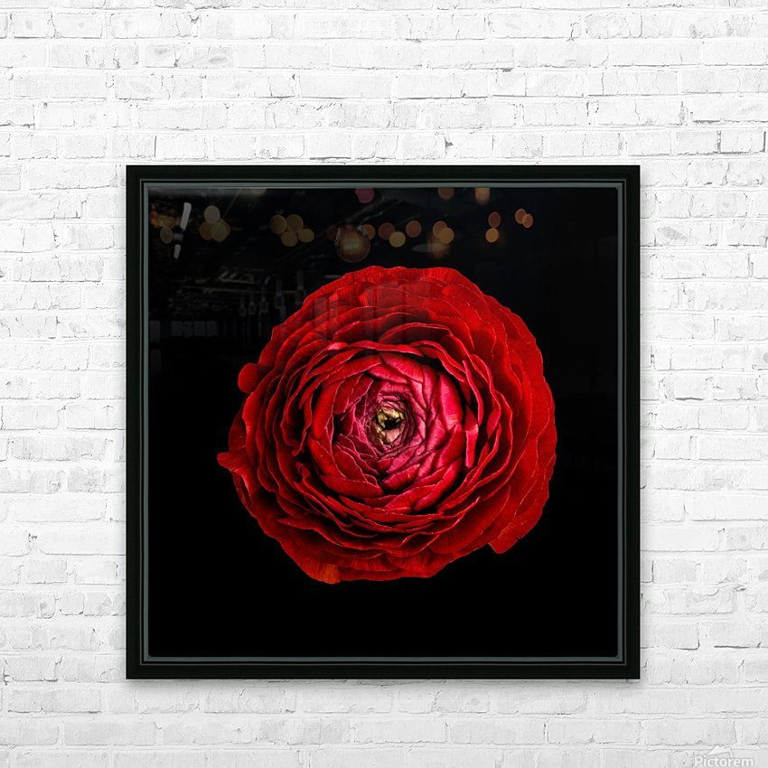 Anemone_2 HD Sublimation Metal print with Decorating Float Frame (BOX)