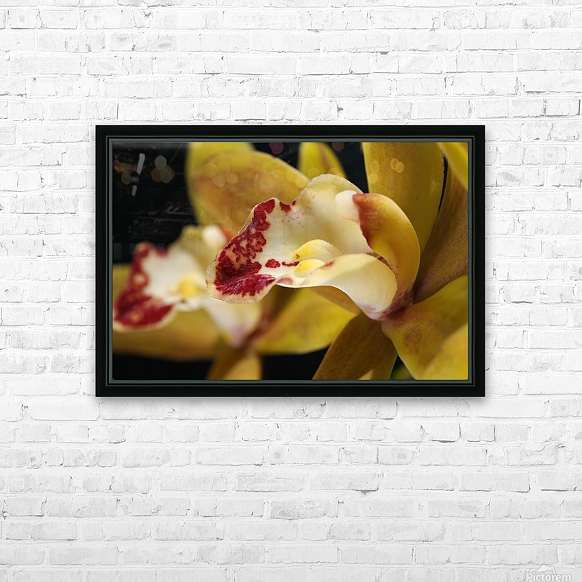 Green and Red Orchid HD Sublimation Metal print with Decorating Float Frame (BOX)