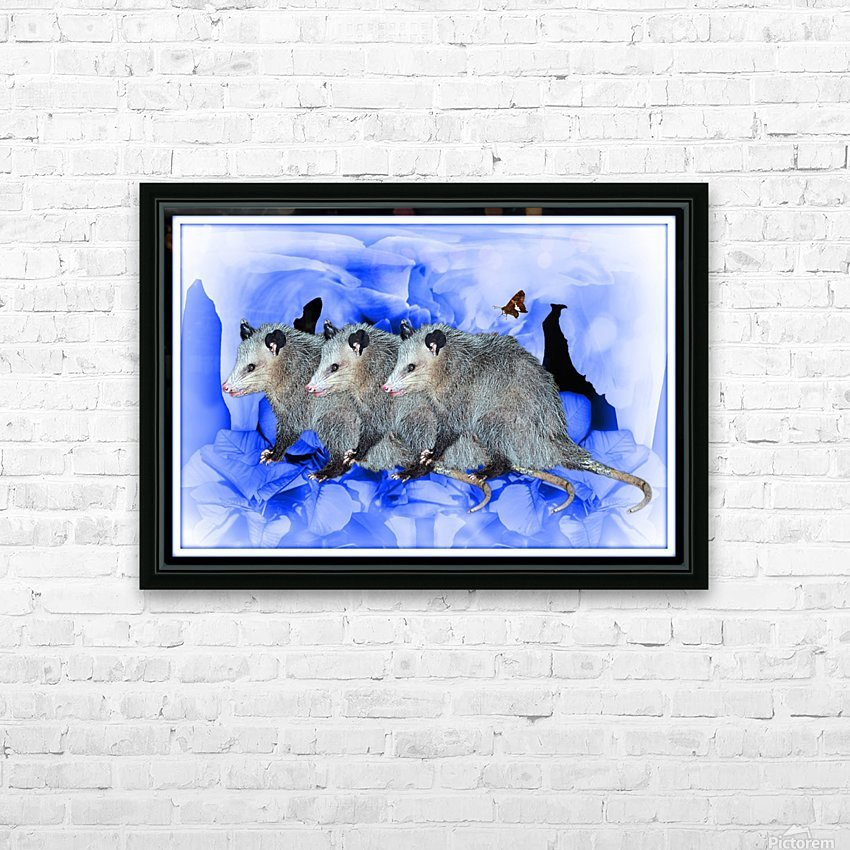 Party Of Possums HD Sublimation Metal print with Decorating Float Frame (BOX)
