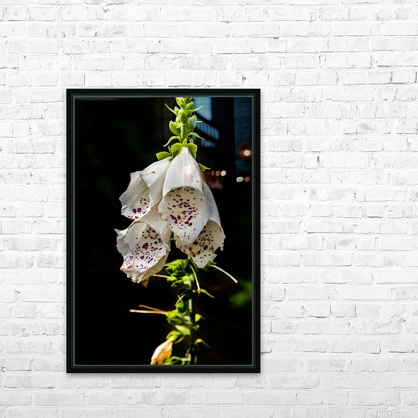 Foxgloves Flowers HD Sublimation Metal print with Decorating Float Frame (BOX)