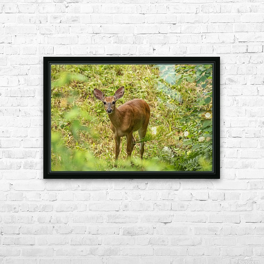 Oh Deer HD Sublimation Metal print with Decorating Float Frame (BOX)