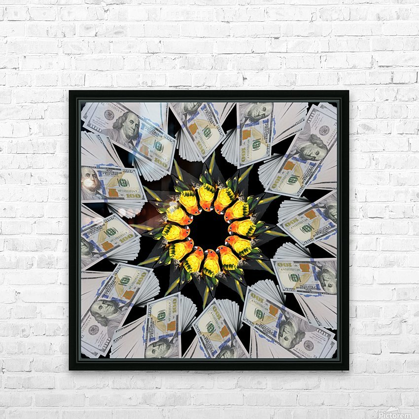 Even MORE of this PARROT MONEY  girl - HD Sublimation Metal print with Decorating Float Frame (BOX)