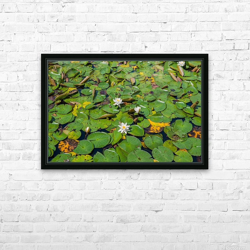 lily pads  HD Sublimation Metal print with Decorating Float Frame (BOX)