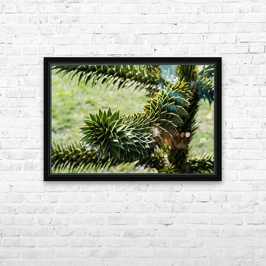 Plant Image HD Sublimation Metal print with Decorating Float Frame (BOX)