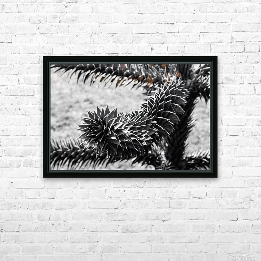 Plant Image BW HD Sublimation Metal print with Decorating Float Frame (BOX)