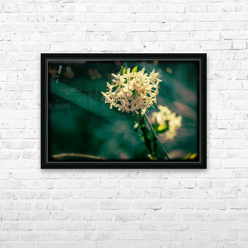 Rice Flower HD Sublimation Metal print with Decorating Float Frame (BOX)