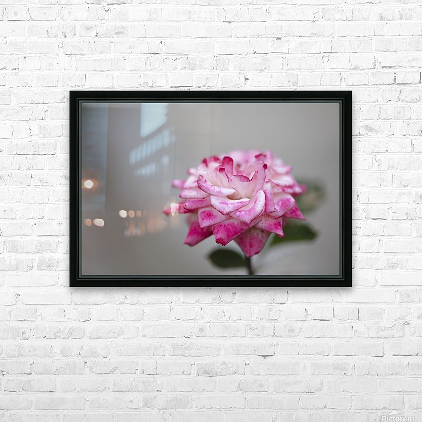 Desert rose HD Sublimation Metal print with Decorating Float Frame (BOX)