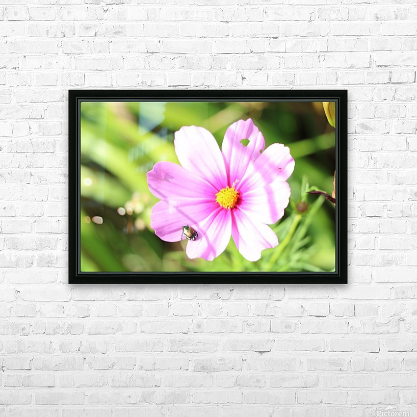 Flower Bug HD Sublimation Metal print with Decorating Float Frame (BOX)